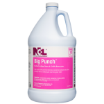 BIG PUNCH